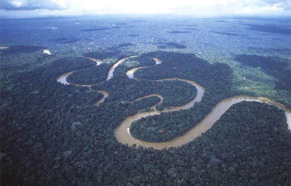 Амазонка оказалась самой длинной